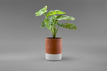 'JEANNOT' SELF-WATERING PLANT POT