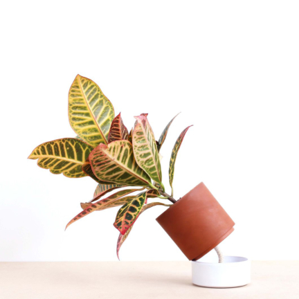'JEANNOT' SELF-WATERING PLANT POT size M