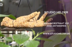 REPORTAGE STUDIO HELDER on RELAX ATV